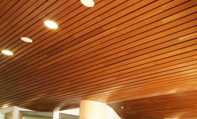 Bathroom Main Wood Slat Ceiling